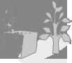 Illustration de la page La gestion individuelle des biodéchets